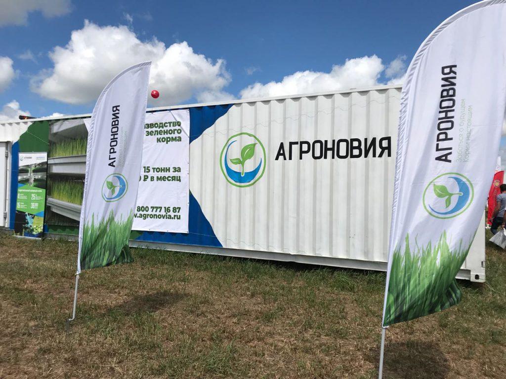 img 3 1024x768 - Всероссийский День поля-2018 в Липецкой области