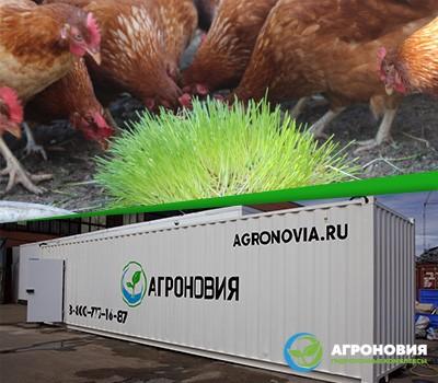 Купить гидропонную установку недорого в Москве с доставкой по России