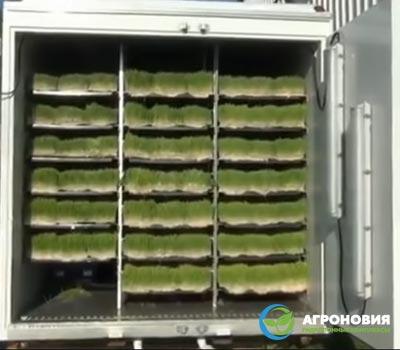 Промышленная гидропонная система для теплицы и фермы