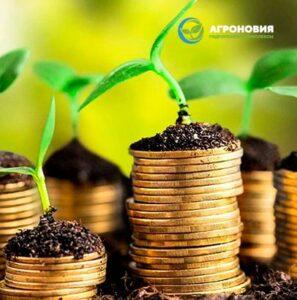 Гидропонные системы для увеличения прибыли в сельском хозяйстве
