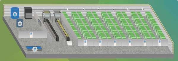 гидропонная системы для выращивания зерна животным