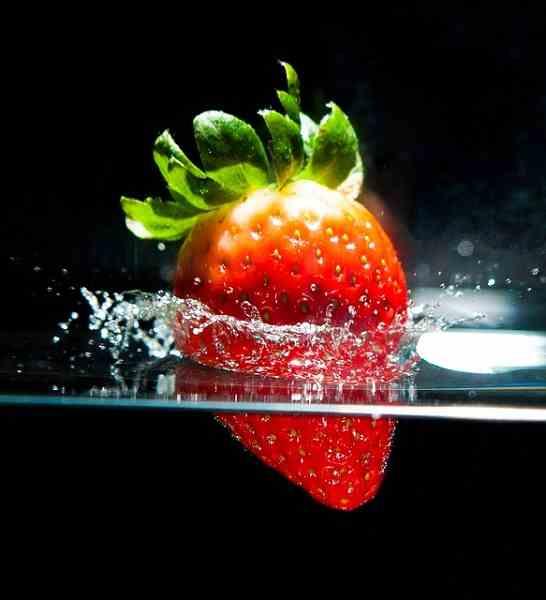 выращивание растений в воде